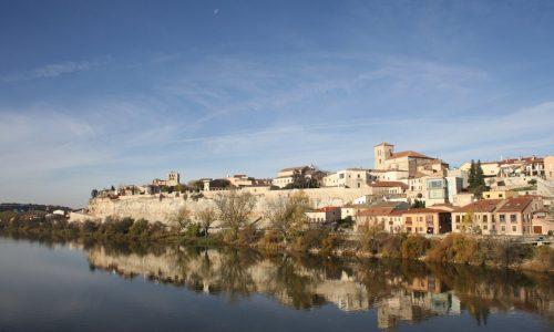 Petrifying Wealth en Zamora